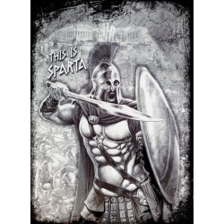 This is Sparta Warrior T-shirt